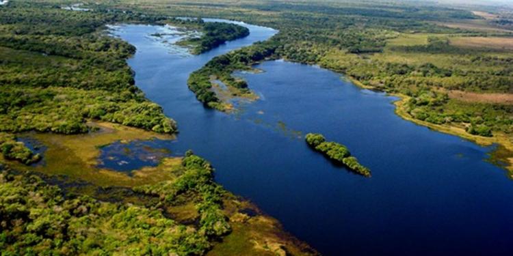 O Parque Estadual de Corumbiara, vizinho ao Parque Estadual da Ilha das Flores, uma das 11 UCs em xeque. Foto: Rosinaldo Machado