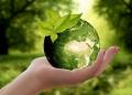 O futuro mercado de carbono depende de regras claras que promovam projetos para gerar créditos certificados de carbono
